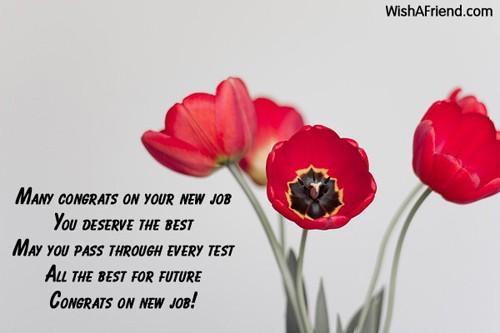 12152-congratulations-for-new-job