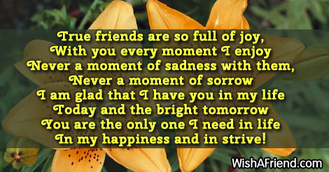 10679-friends-forever-poems