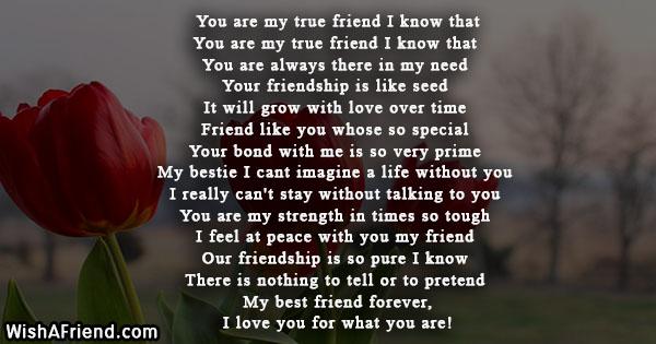 true-friend-poems-21253