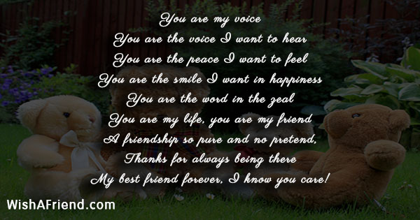 short-friendship-poems-21546