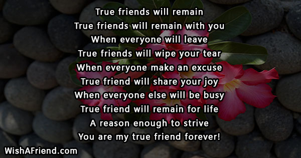 true-friends-short-poems-21576