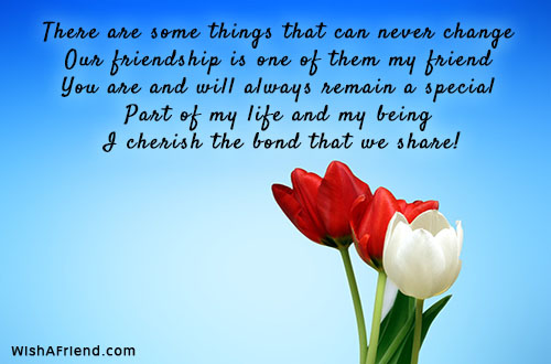 There Are Some Things That Can Best Friend Quote
