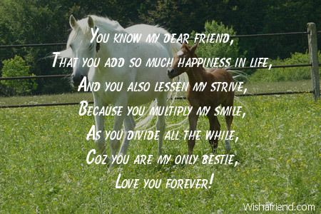 funny-friendship-poems-8330