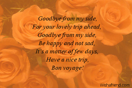 Goodbye from my side, For your lovely, Bon Voyage Message