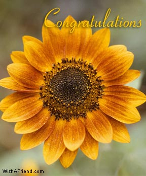 congratulations2.jpg