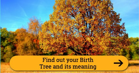 birthtree