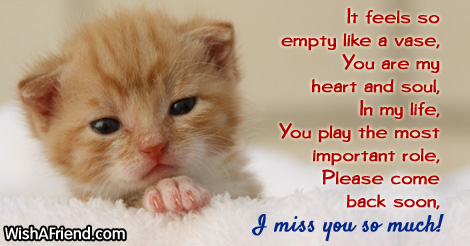missing-you-messages-for-boyfriend-9825