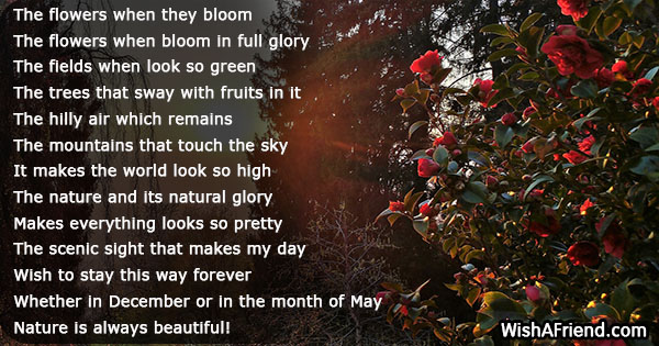 nature-poems-20471