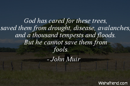 arborday-God has cared for these
