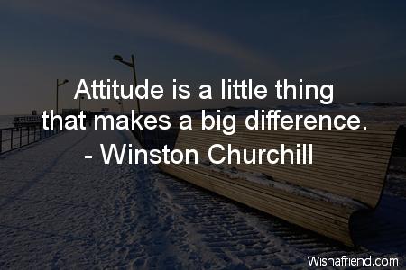 1131-attitude