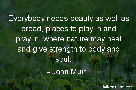 Everybody Needs Beauty As Well John Muir Quote