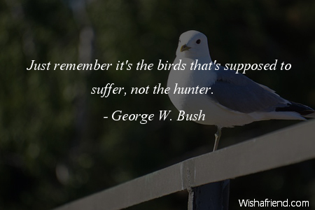 bird-Just remember it's the birds