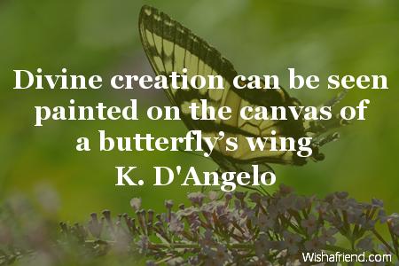 2434-butterfly
