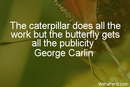 butterfly-The caterpillar does all the
