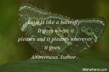 butterfly-Love is like a butterfly: