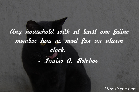 Louise A  Belcher Quote: Any household with at least one feline
