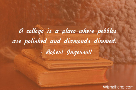 college-A college is a place