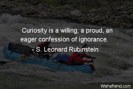 3119-curiosity