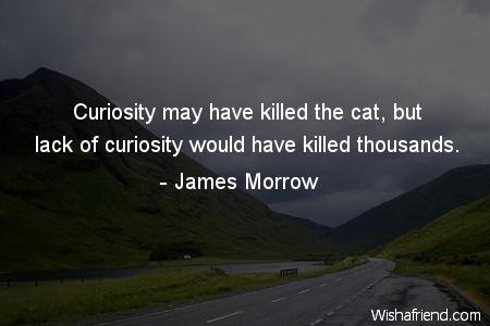 3121-curiosity