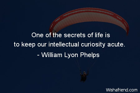 3128-curiosity