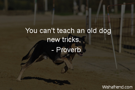 Proverb Quote: You can\'t teach an old dog new tricks.