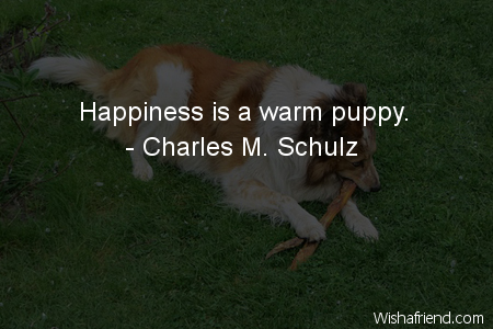 dog-Happiness is a warm puppy.