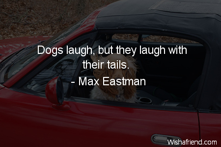 dog-Dogs laugh, but they laugh