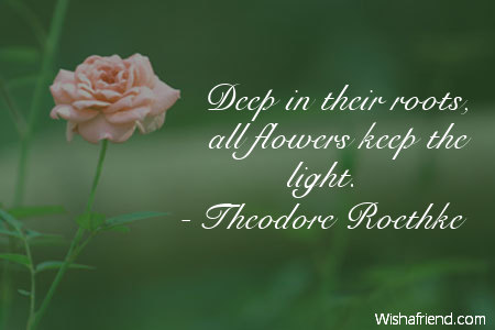 Deep In Their Roots All Theodore Roethke Quote