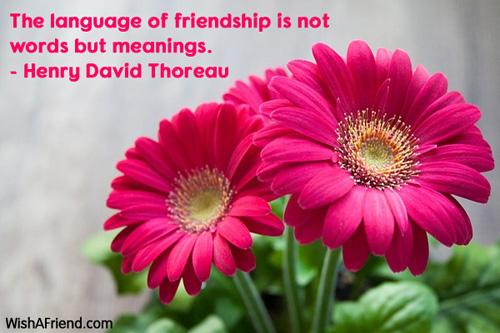 11537-friendship