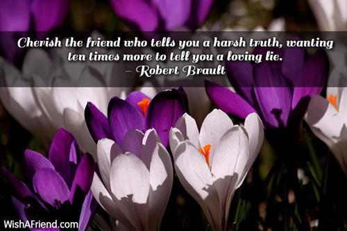 11538-friendship