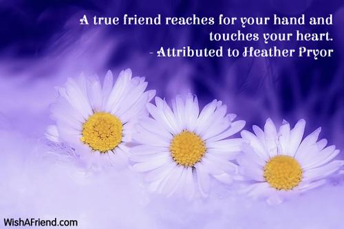 11540-friendship