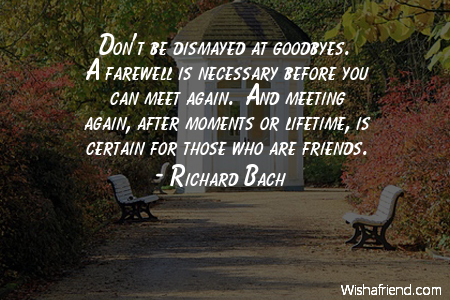 Goodbye we will meet again quotes