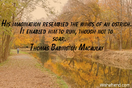 imagination-His imagination resembled the wings