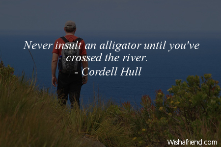 insults-Never insult an alligator until