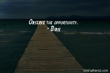 opportunity-Observe the opportunity.