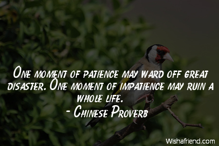 8164-patience