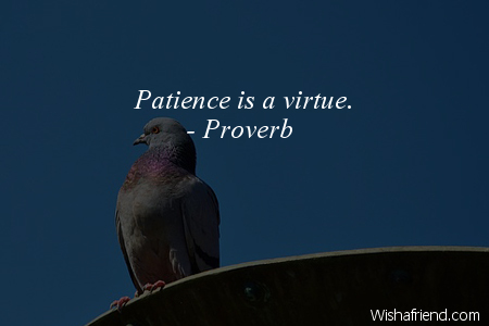 8174-patience