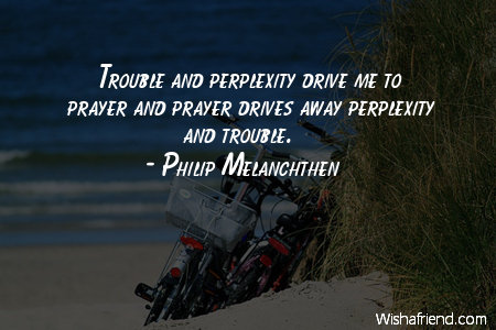 prayer-Trouble and perplexity drive me