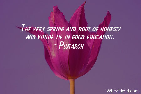 spring-The very spring and root