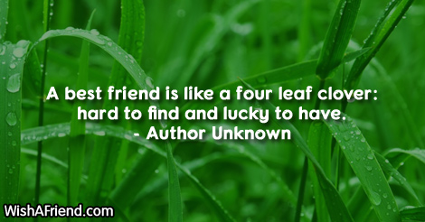 stpatricksday-A best friend is like