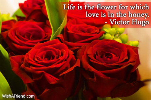 valentinesday-Life is the flower for