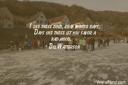 Bill Watterson Quote: I like these cold, gray winter days. Days