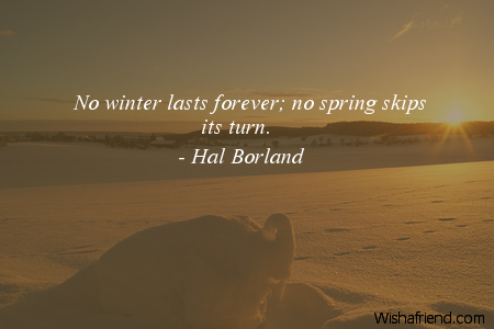 11226-winter