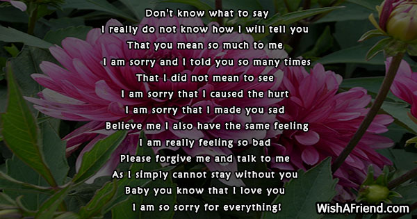 sorry-poems-for-him-23480