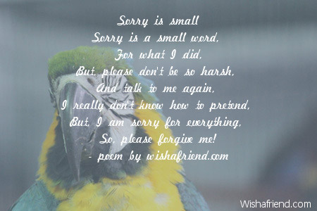5044-sorry-poems