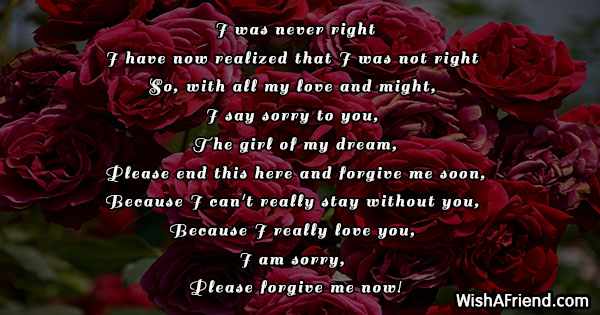 sorry-poems-for-her-9836